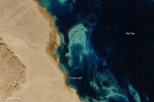 El Gouna, Egipto, fotografiada desde el espacio en 1985. Foto: NASA