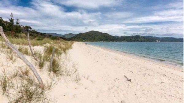 playa nueva zelanda crowfunding